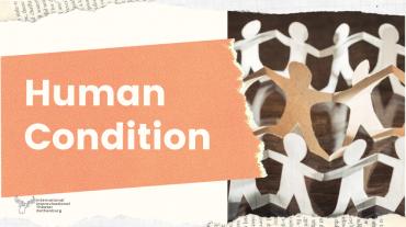 Human Condition portfolio